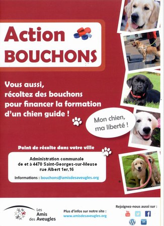 Action Bouchons