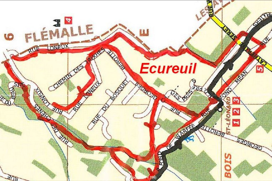 Carte de l'Ecureuil